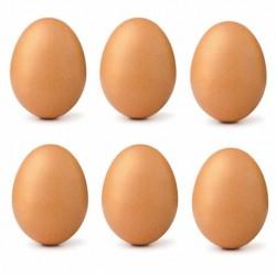 Uova, confezione da 6
