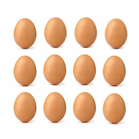 Uova confezione da 12