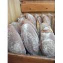 Pane nero di Castelvetrano (filone)